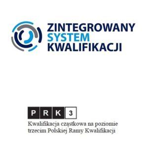 druk 3d ZSK prk3